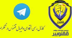 کانال رسمی آکادمی ققنوس در تلگرام